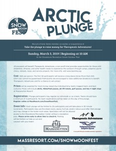 Arctic Plunge flyer